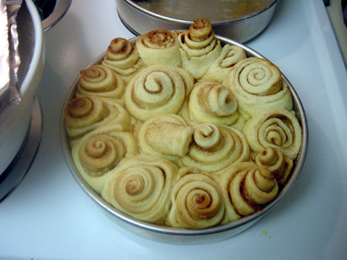 My first batch of cinnamon rolls!